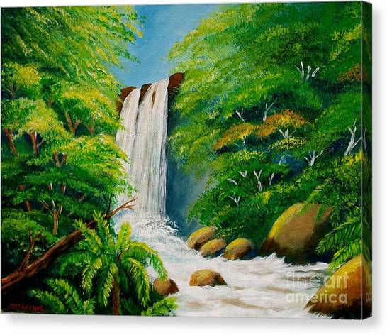 Costa Rica Waterfall Canvas Print