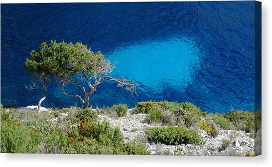 Pine Trees At Azure Waters Canvas Print