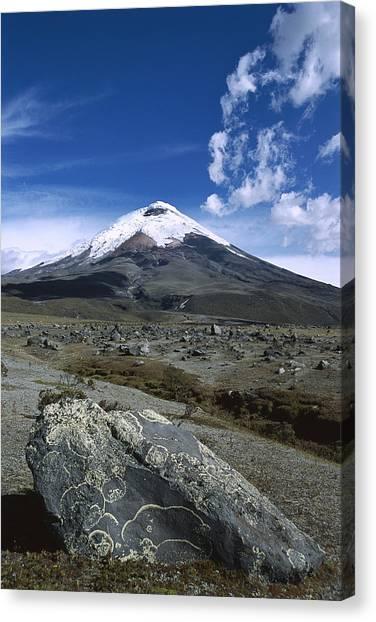 Cotopaxi Canvas Print - Cotopaxi Volcano Above Andean Plateau by Tui De Roy