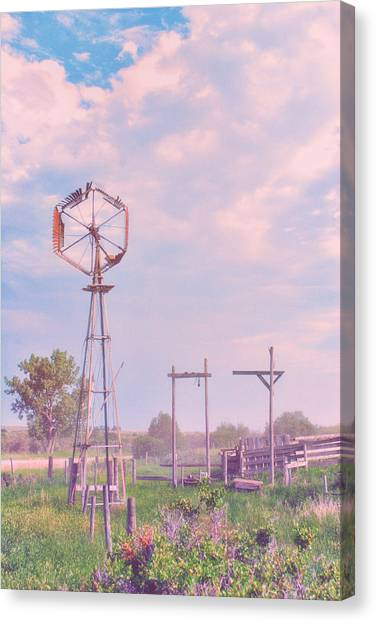 Drywall Canvas Print - Cotton Candy Farm by Starlux  Productions