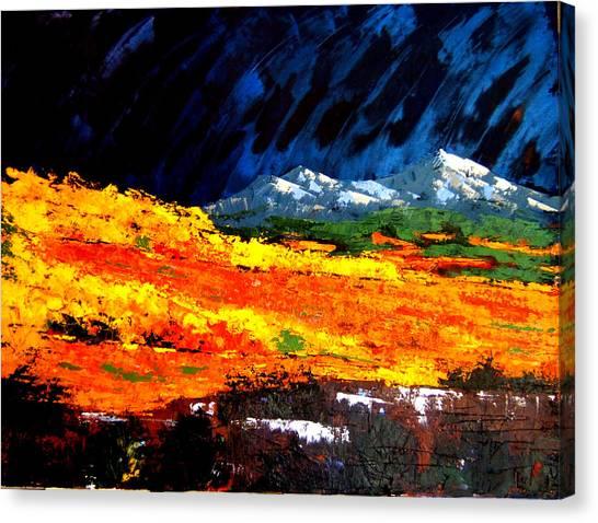 Cotton Woods Canvas Print