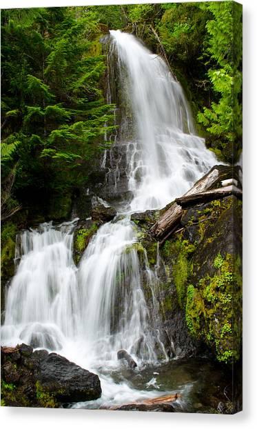 Cougar Falls Canvas Print
