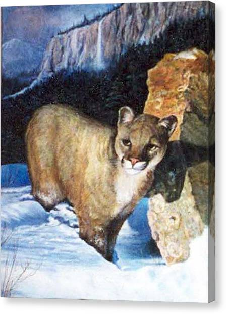 Cougar In Snow Canvas Print