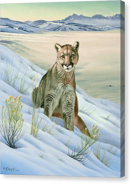 Yellowstone Canvas Print - 'cougar In Snow' by Paul Krapf