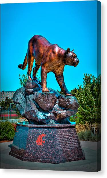 Pac 12 Canvas Print - Cougar Pride Sculpture - Washington State University by David Patterson