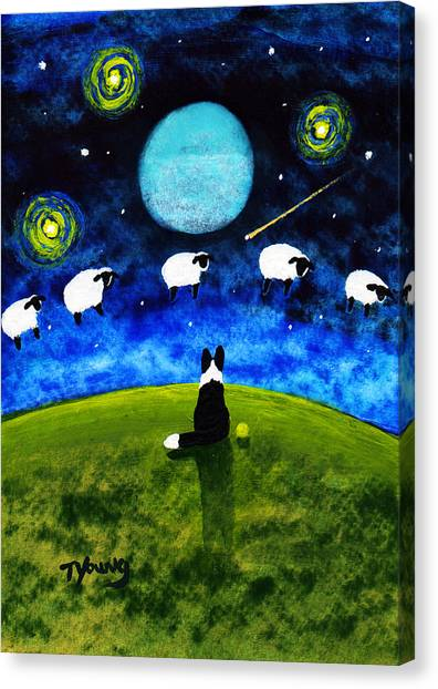 Border Collies Canvas Print - Counting Sheep by Todd Young
