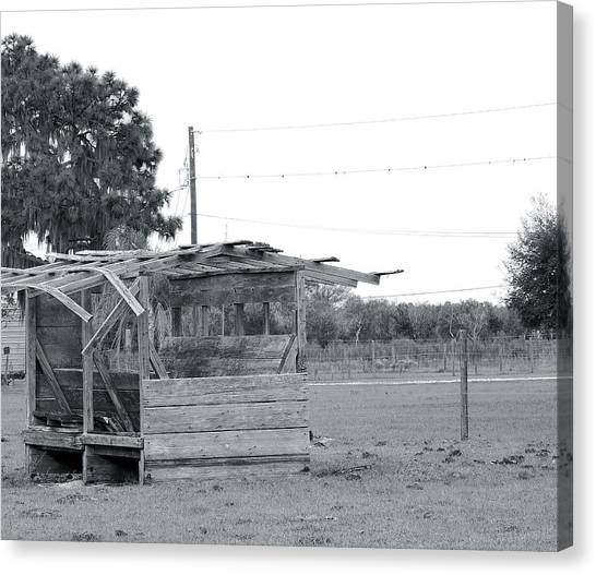 Country Blues Canvas Print by Santiago Rodriguez