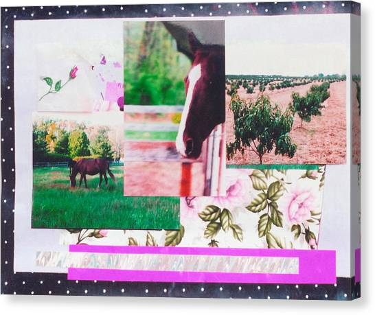 Country Collage 1 Canvas Print