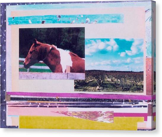 Country Collage 5 Canvas Print