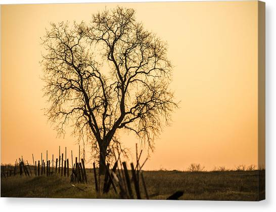 Country Fence Sunset Canvas Print