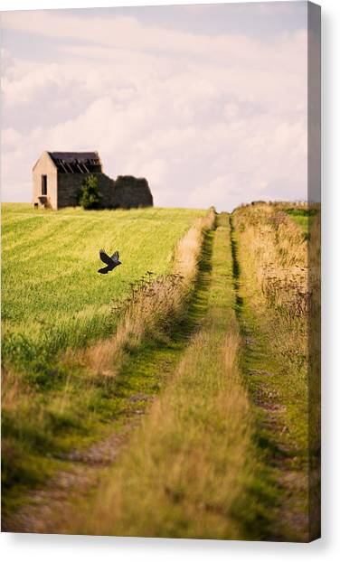 Peak District Canvas Print - Country Lane by Amanda Elwell