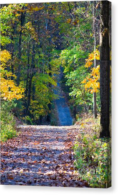 Country Lane Canvas Print by Deb Kline