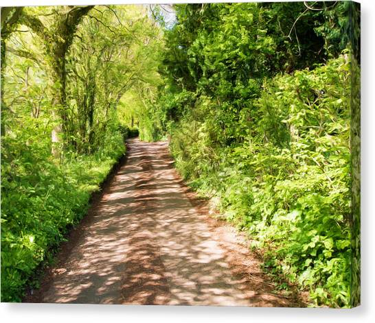 Canopy Canvas Print - Country Lane Painting by Roy Pedersen