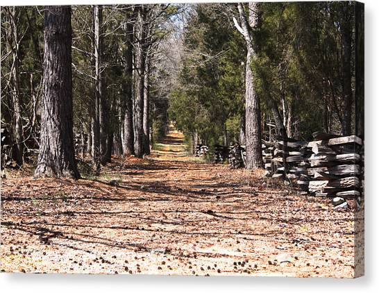 Country Road Canvas Print by Arthur Warlick