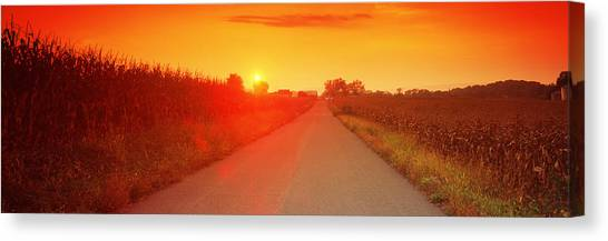 Country Roads Canvas Print - Country Road At Sunset, Milton by Panoramic Images