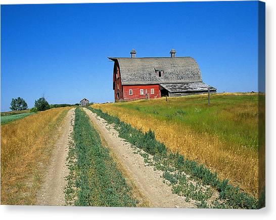 Country Road In Saskatchewan Canvas Print by Buddy Mays
