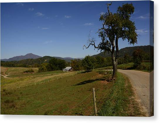 Country Road Canvas Print by Michael Gooch