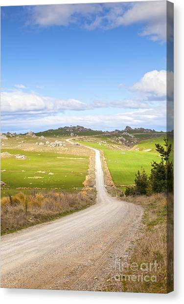 Country Road Otago New Zealand Canvas Print by Colin and Linda McKie