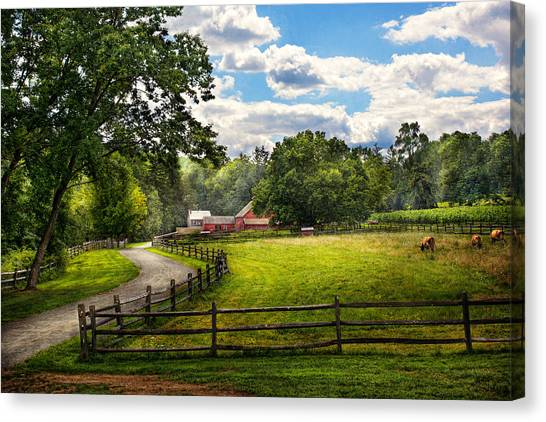 Old Country Roads Canvas Print - Country - The Pasture  by Mike Savad