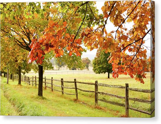 Countryside Landscape With Fence Canvas Print by Jena Ardell