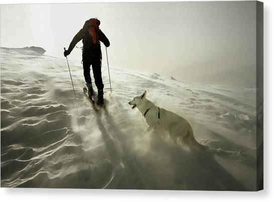Skiing Canvas Print - Couple by Izidor Gasperlin