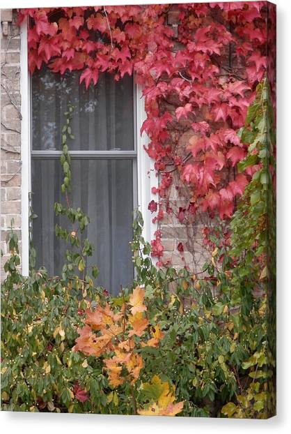 Covered Window Canvas Print by Margaret McDermott