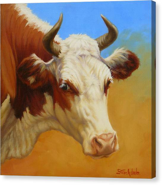 Cow Face Canvas Print