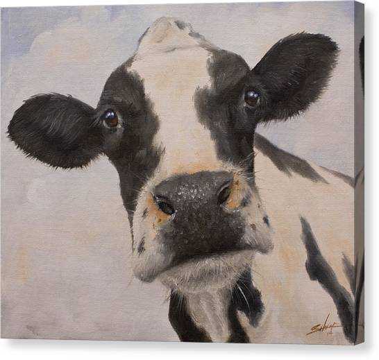 Canvas Print - Cow Portrait I by John Silver