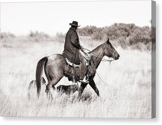 Cowboy And Dogs Canvas Print