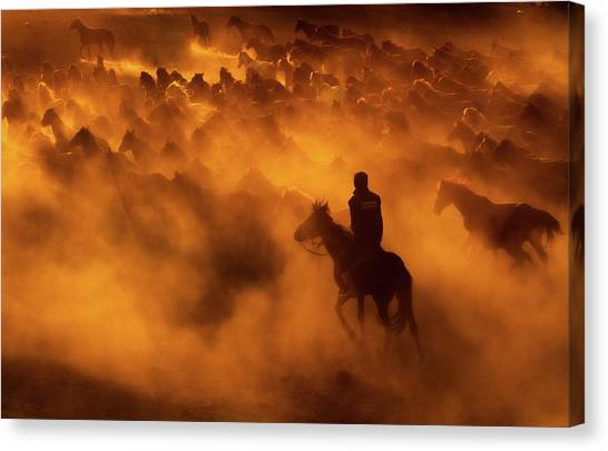 Cowboy Canvas Print - Cowboy by Feyzullah Tunc