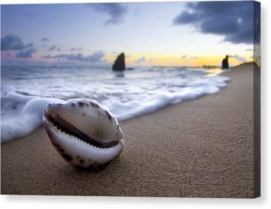 Ocean Sunrises Canvas Print - Cowrie Sunrise by Sean Davey