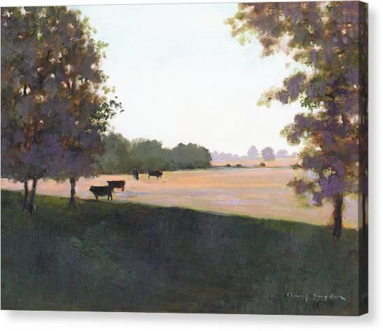 Cows 5 Canvas Print