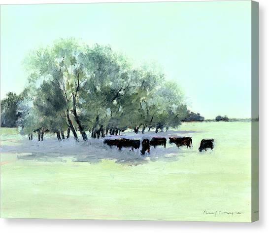 Cows 7 Canvas Print