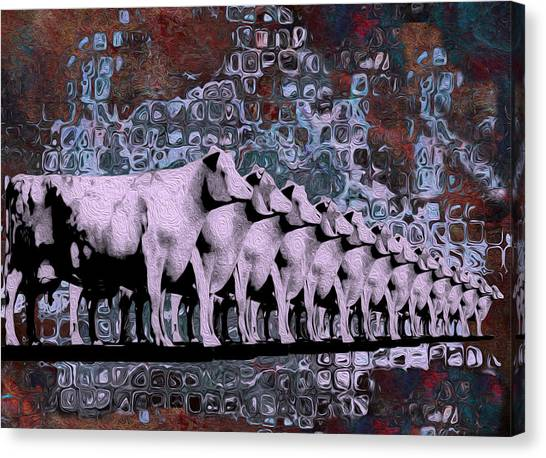 Analog Canvas Print - Cows In Order 2 by Jack Zulli
