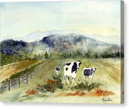 Cows In Vermont  Canvas Print by Peggy Maunsell