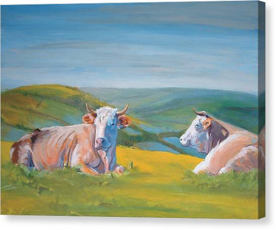Cows Lying Down Painting Canvas Print