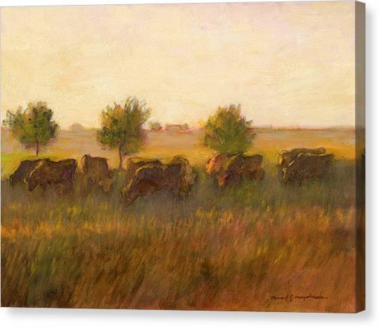 Cows1 Canvas Print