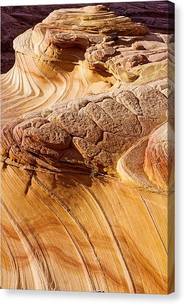 Coyote Buttes Pattern In Nature Canvas Print