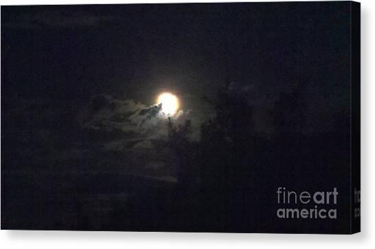 Coyote Moon Canvas Print