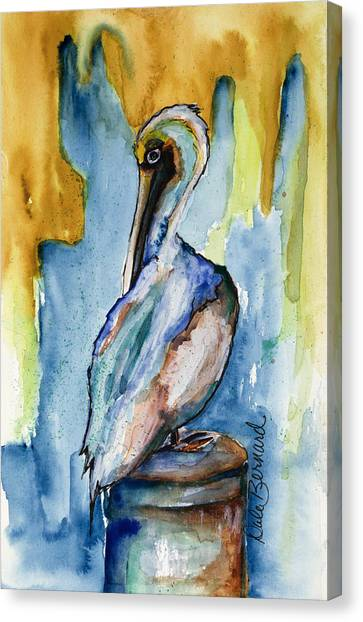 Cozumel Pelican  Canvas Print