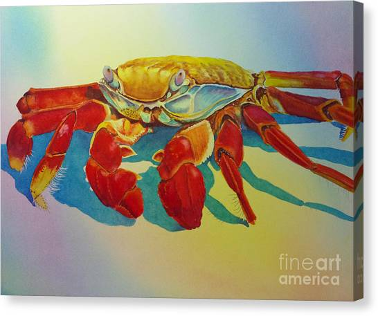 Colorful Crab  Canvas Print