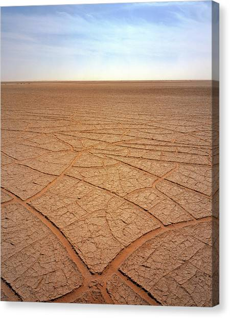 Sahara Desert Canvas Print - Cracked Mud by David Parker/science Photo Library