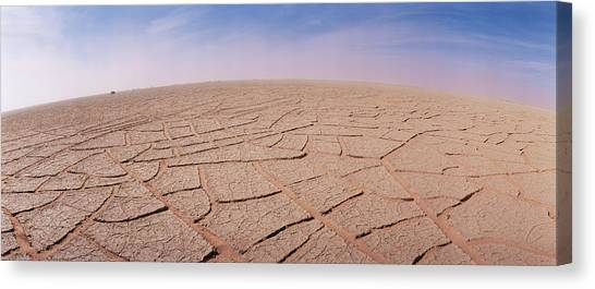 Sahara Desert Canvas Print - Cracked Mud by Sinclair Stammers/science Photo Library