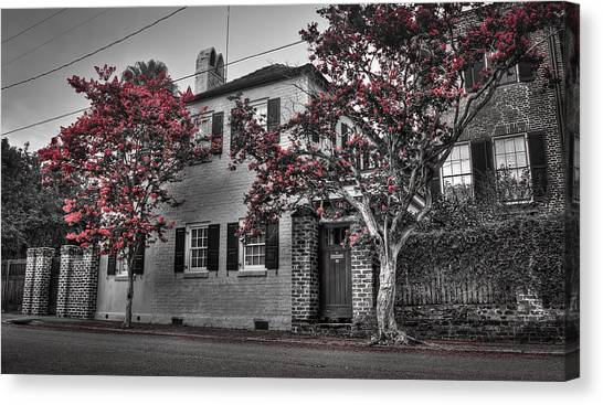 Crape Myrtles In Historic Downtown Charleston 1 Canvas Print