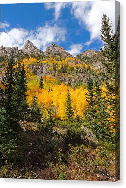 Crater Lake Trail 2 Canvas Print by Steve Anderson