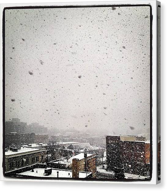 Storms Canvas Print - Crazy Heavy Snow On The Rooftops Of Ne by Heidi Hermes