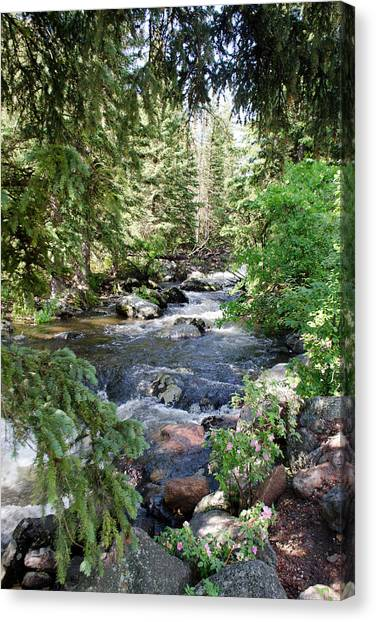 Crazy Woman Creek Canvas Print