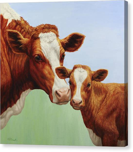 Cow Farms Canvas Print - Cream And Sugar by Crista Forest