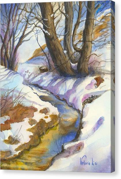 Creek At Bobcat Ridge Canvas Print