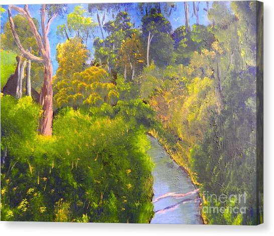 Creek In The Bush Canvas Print